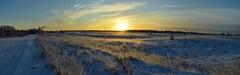 Sunrise. ND400 filter. (moshepotz) Tags: selivanovo dubrova nd400 landscape winter sunrise