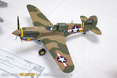 P-40K-5 Warhawk - Mike Regan