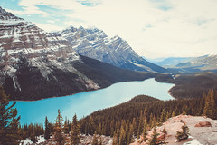 Magical mystery paw (bingo blue) Tags: lake peyto canada canon alberta banff landscape mountains icefieldsparkway
