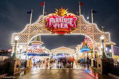 Paradise Pier at Night (Samantha Decker) Tags: anaheim ca california canonef1635mmf28liiusm canoneos6d disneyscaliforniaadventure disneyland paradisepier samanthadecker socal night socal16 themepark