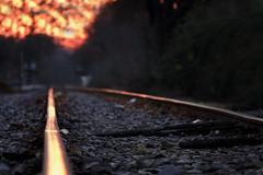 forgotten ... (mariola aga) Tags: evening sunset railroadtracks bokeh depthoffield forgotten red glow