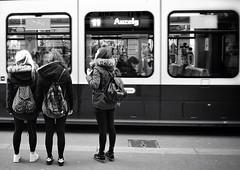 packsack models (Thomas8047) Tags: streetart zurich zrich schweiz switzerland ch monochrome bw streetphotography streetpix onthestreets schwarzundweiss strassenfotografie nikon thomas8047 herbst bahnhofstrasse streetartstreetlife urban flickr snapseed people stadtansichten city candid streetscene blackandwithe blancoynegro zri strassenfotograf strassenfotografieschweiz zrichstreets iamnikon 2016 packsack models fineartstreetphotography hofmanntmecom d300s 175528 strasse vbz tram girls stadtzrich zrigrafien street