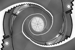 Spiral stairs - University Dresden (explored) (Janette Paltian) Tags: janettepaltian canon 650d weitwinkel wideangle treppe wendeltreppe stairs staircase steps stufen 1018 weis white black schwarz sw bw architecture architektur ceiling decke treppenhaus circle kreis building gebude germany deutschland dresden tudresden universitt university hlssebau stairway indoor spiral spirale geometric geometrisch symmetrie symmetry