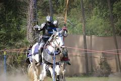 IMG_4780 (joyannmadd) Tags: horse rider joust spar duel warhorse hammoind louisiana armour outdoor game war combat midevil larenfest