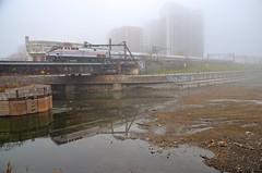 Heritage unit in the fog (Michael Berry Railfan) Tags: montreal sthyacinthesub train passengertrain peelbasin quebec amtk145 amtrak amtk68 amtk694 adirondack heritageunit ge generalelectric genesisseries p42dc