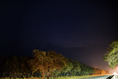 Falfurrias, Texas (mudpig) Tags: road longexposure cloud color tree night photography highway colorful texas restarea falfurrias barroso 2015 mudpig stevekelley us283 stevenkelley
