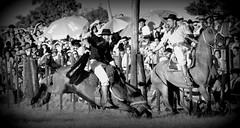 Histria de uma rodada (Eduardo Amorim) Tags: brazil horses horse southamerica brasil criollo caballo cheval caballos cavalos pelotas pferde cavalli cavallo cavalo gauchos pferd riograndedosul pampa hest hevonen campanha brsil chevaux gaucho  amricadosul fronteira hst gacho  amriquedusud  gachos  sudamrica suramrica amricadelsur  sdamerika crioulo caballoscriollos criollos jineteada   costadoce americadelsud gineteada  crioulos cavalocrioulo americameridionale caballocriollo eduardoamorim cavaloscrioulos