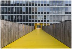 Luchtsingel- Rotterdam. (Rens Timmermans) Tags: rotterdam architectuur sigma1224f4556dg canon5dmk3