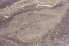 Azraq Kite 103 (APAAME) Tags: geotaggedbasedonsite scannedfromnegative aerialarchaeology aerialphotography middleeast airphoto archaeology ancienthistory