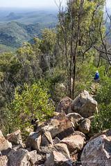 Flinders Peak route (NettyA) Tags: trees mountain clouds landscape rocks track rocky australia ridge trail bushwalking qld queensland bushwalk ipswich 2015 bushwalkers seqld flinderspeak flindersgoolmanconservationestate sonya7r
