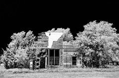 Hitschmann General Store (explore) (unknown quantity) Tags: monochrome abandoned gaspump deterioration grass overgrowth trees shadows sky weathered crumbling utilitypole neglect oxidation barewood blackandwhite fadedpaint