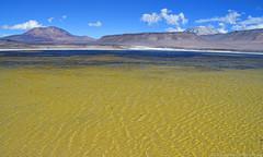 Cordillera de Atacama Paso San Francisco Chile (jmalfarock) Tags: chile naturaleza latinamerica americalatina nature america landscape nikon paisaje colores atacama sudamerica cordilleradelosandes pasosanfrancisco d5100