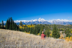 What A View (Michael Pancier Photography) Tags: autumn trees mountains fall nature pine outdoors us scenery unitedstates jackson pines aspens wyoming peaks nationalparks americathebeautiful grandteton jacksonhole fineartphotography cottonwoods tetonrange naturephotography grandtetonnationalpark americansouthwest travelphotography snowcaps commercialphotography naturephotographer editorialphotography mountowen middleteton mountwister southteton michaelpancier michaelpancierphotography staticpeak landscapephotographer fineartphotographer nationalparkphotography michaelapancier tetonpoint americasnationalparks wwwmichaelpancierphotographycom fallinthenationalparks