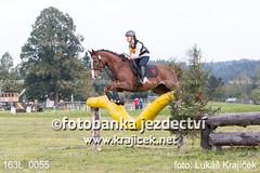 163L_0055 (Lukas Krajicek) Tags: military czechrepublic cz kon koně vysočina vysoina southbohemianregion blažejov dvoreček všestrannost dvoreek