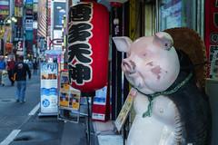 たぬk…豚さん (enebisu) Tags: sony tamron ラーメン 新宿 a09 狸 豚 豚骨 a7ii 提灯 歌舞伎町 博多天神 laea4 α7ii ilce7m2