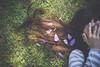 Hair petals (another side view) Tags: lighting light portrait woman art nature female digital hair 50mm petals artwork nikon df natural outdoor f14 longhair sigma petal wilderness 自然 cosmos artworks 光 アート ポートレート naturallighting コスモス artline 秋桜 女性 naturelight naturalism 髪 デジタル naturepeople womanportrait 花びら ニコン ネイチャー シグマ 自然光 flickrbestpics アートライン nikondf ニコンdf 自然と人