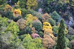 Greece is... (sifis) Tags: color nature nikon greece 2470 sakalak d700