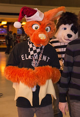 DSC_0088 (Acrufox) Tags: chicago illinois furry midwest december ohare rosemont convention hyatt regency 2014 fursuit furfest fursuiting acrufox mff2014