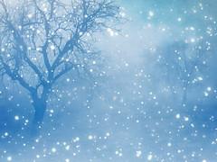 ... (R_Ivanova) Tags: nature landscape snow tree textured color blue bulgaria rivanova риванова зима winter