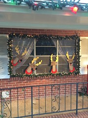 1963 Popular Mechanic Christmas idea bought to life... (JeffCarter629) Tags: christmas diy vintagechristmas popularmechanics vintagechristmasdecorations