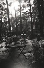 Skogskyrkogården (Trixi Skywalker) Tags: black white canon av1 kodak tmax400 trix 400 stockholm sweden sverige 50mm 18 nature plant flower forest grass tree camera analog analogue skogskyrkogården
