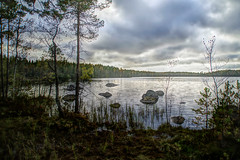 Degertrsk igen (STTH64) Tags: pond lake swamp trees water sky clouds autumn