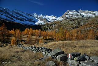 Trionfo d'Autunno in Valle Antrona