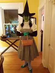 Sean Brown as the Wicked Witch of the West in her 2016 Halloween costume as an obnoxious gremlin (Halloween in Oz) Tags: seanbrown wickedwitchofthewest halloween2016 salem ma hawthornehotelcostumeball sevendeadlysins glinda oz halloweeninoz salemhauntedhappenings2016