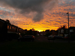 Sunset Knowle (ste_pics) Tags: sunset knowle