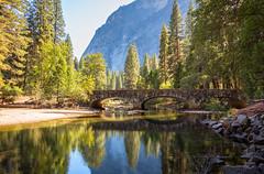 Missing Yosemite (Geoff Livingston) Tags: yosemite mountain water mirror bridge pine redwood
