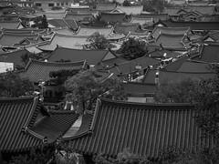 Jeonju (xihuchris) Tags: south korea asia lumix 14mm 28mm 25 mu43 street black white monochrome g6
