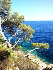 Littoral varois (frecari) Tags: var france nature landscape paysage mer mediterranée sea 2016 summer ete