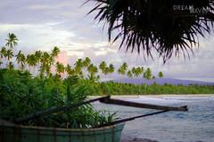 (Rocio taburelli) Tags: palmtree sumatra sunset palms paradise beach sea surftrip indonesia indotrip surfphotography
