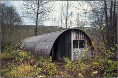 Quonset Hut (NoJuan) Tags: kingcountywa washingtonstate quonset quonsethut 6d eos6d 28cmnikkorh nikkor nikkorlens abandoned neglected