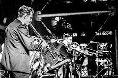 Nant-in-Swing IMG_5422 (photo.bymau) Tags: bymau reportage festival swing dans concert canon 7d bw black white noir blanc negro nantes 2016 elephant atelier danse dance