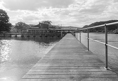 Fishermens Wharf in black and white (Merrillie) Tags: building nature wharf birds monochrome outdoor nswcentralcoast blackandwhite newsouthwales clouds nsw sun fishermenswharf sky fishermenswharfwoywoy centralcoastnsw photography wildlife twilight waterfront outdoors animals fauna centralcoast pelicans australia