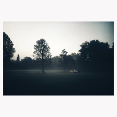 (Nicolas Gerber) Tags: early morning fog park light wondel shade autumn all plan draft time busy project what