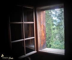 Window (jenanjamal_87) Tags: window heidi heidiland switzerland