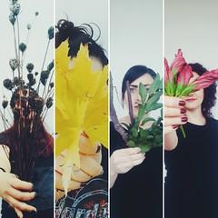 This is Autumn (slow_brains) Tags: preview friends girls girl nature hamlock maple hibiscus woodrose laurel seasons season italia italy whitewall portrait portraits