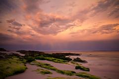 Sunset at Hyams Beach, Jervis Bay (PhilliB123) Tags: canon 600d t3i 1585mm hyams beach jervis bay nsw south coast australia sunset storm clouds pink skies green rocks long exposure