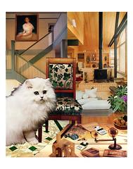 Virgo - StarCat (tjager) Tags: astrology zodiac horoscope virgo starcat livingferal cat catlover earthsign collage art analog