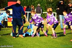 Brest Vs Plouzané (21) (richardcyrille) Tags: buc brest bretagne rugby sport finistére plabennec edr extérieur
