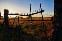 Coucher de soleil (BelgiumOnePoint) Tags: lahulpe automne fall herfst soleil sun zon coucherdesoleil sunset zonsondergang campagne country nikon d610 c1 couleurs colors kleuren