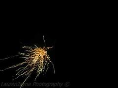 #bonfirenight #fireworks #phptography (laurenharrison4) Tags: phptography bonfirenight fireworks