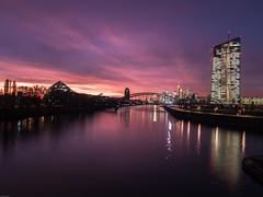 Frankfurt skyline on fire (verweile.doch) Tags: germany deutschland frankfurt sunset main water wasser sonnenuntergang fluss river ezb skyline colors verweiledoch