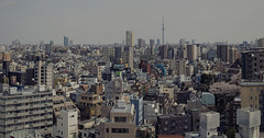 Tokyo 4091 (tokyoform) Tags: tokyo tokio  japo japn tower giappone nhtbn tquio           chrisjongkind tokyoform  japanese asia asian city     ciudad cidade ville stadt urban  cityscape skyline paesaggiourbano paisagemurbana paisajeurbano paysageurbain   stadtbild     urbansprawl dense skyscraper      tokyoskytree