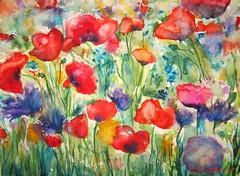 Sommerblumenwiese (Gabriele Schneider) Tags: sommer wiese blumen mohn