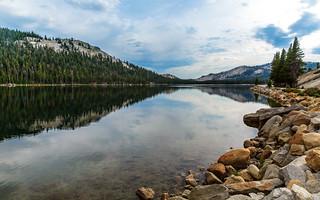 A scene in Yosemite