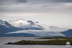 Glacier (andrea.prave) Tags: sea mer ice island mar iceland islandia meer mare glacier gletscher eis glaciar  deniz hielo glace islande hav ghiaccio sj ghiacciaio  islanda     hfn hofn s  suurland      jkullinn   sj