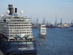 Mein Schiff 4 & Artemis (ChristianeBue) Tags: water port germany deutschland wasser sailing ship harbour hamburg cranes hafen schiff cruiser elbe kreuzfahrtschiff segeln kräne